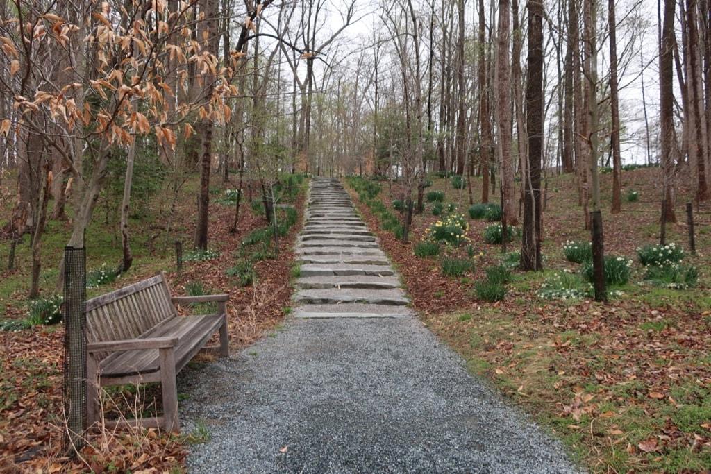 Forest Path Glenstone MD