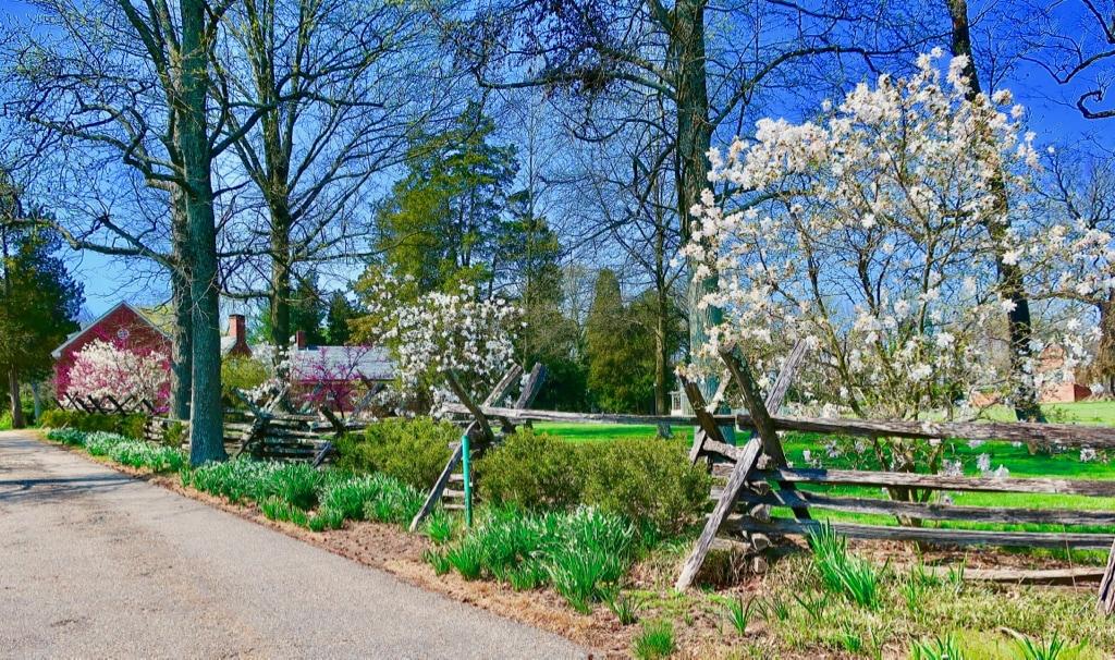 Garden walk Montpelier Mansion Laurel MD