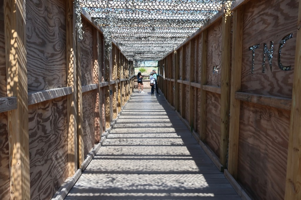 Bird Blind allows visitors to see shore birds up close Cape May South Meadows