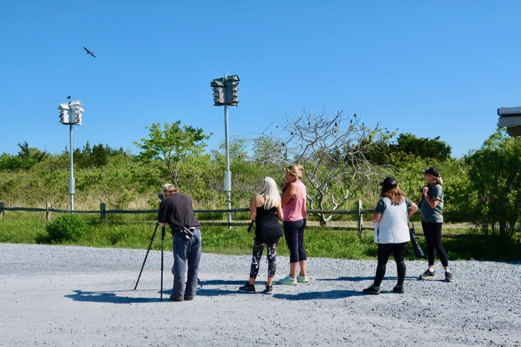 Birders in their happy place: Cape May NJ