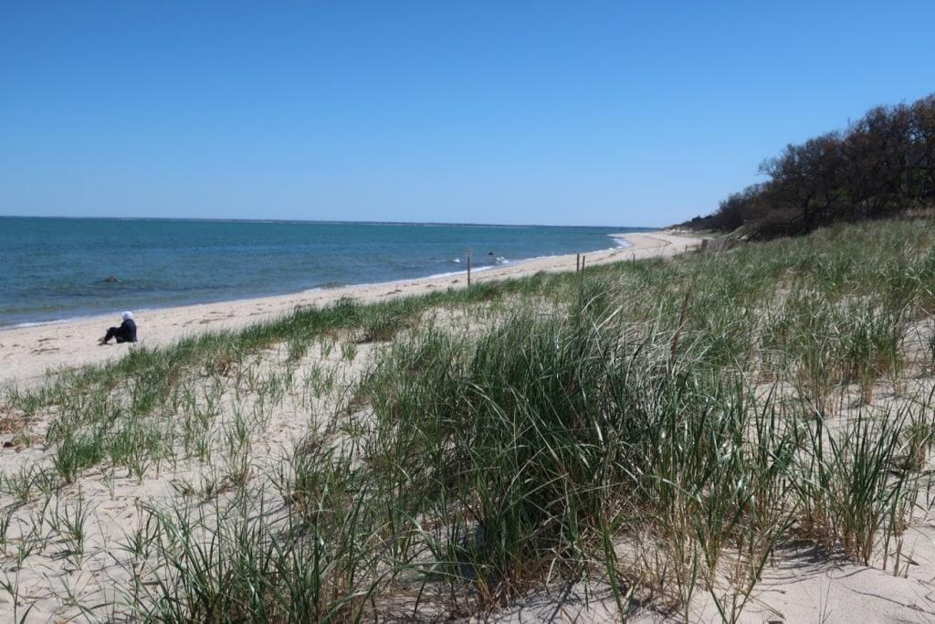 Brewster MA beach