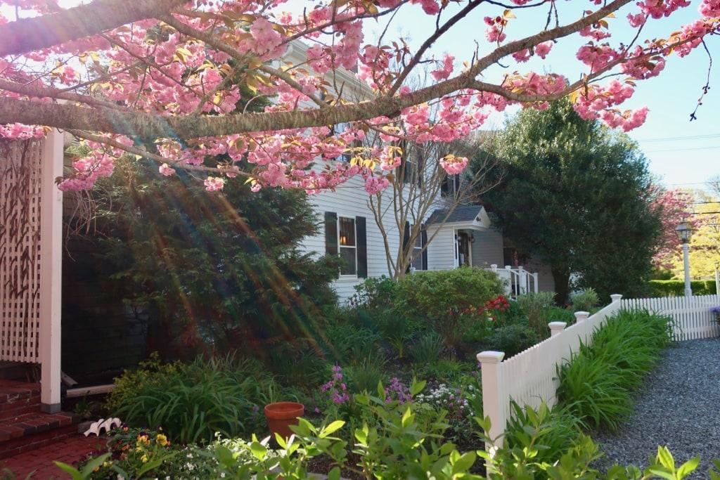 Candleberry Inn Brewster MA