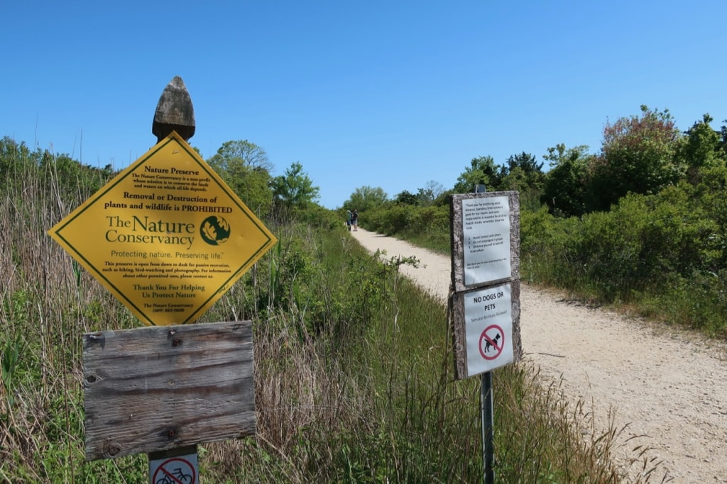 Cape May Nature Conservancy South Meadows