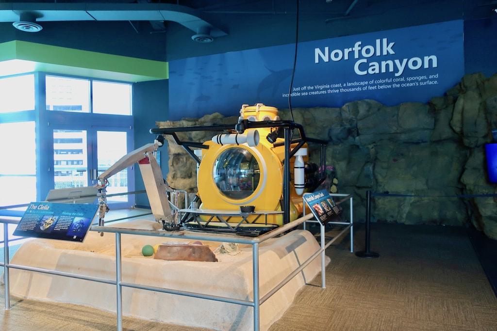 Norfolk Canyon exhibit Nauticus