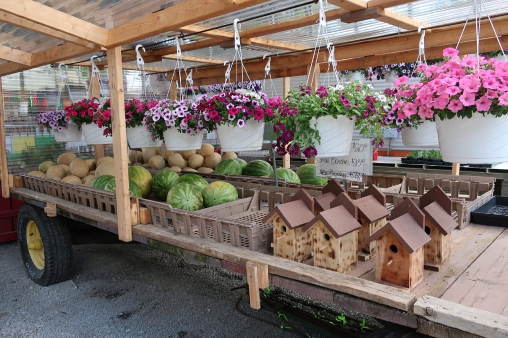Produce and flowers at Pletchers Farm Market PA
