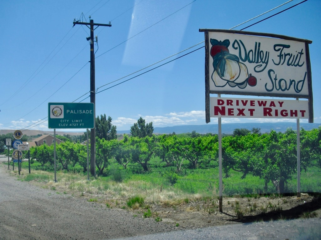 Palisade CO Fruit and Wine Region
